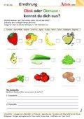 biologie ernährung und verdauung klasse 6